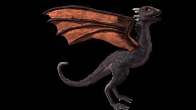 dragon_retouched_002_0030